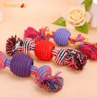 dog toy rubber ball