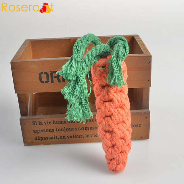 rope toy carrot