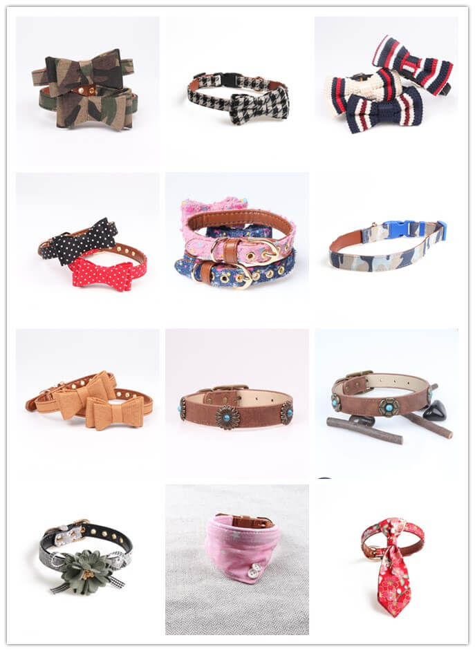pet collar&leash
